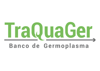 Traquager